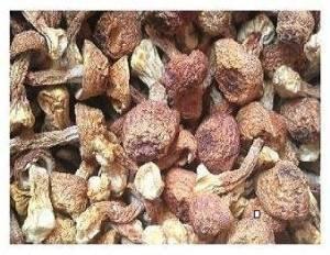 1-libra-454-gramos-casa-seca-Agaricus-Blazei-Premium-Grade-de-Yunnan-China—0