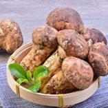 1-libra-454-gramos-rebanadas-de-Matsutake-liofilizadas-Grado-superior-de-la-seta-de-Yunnan-China-0-0