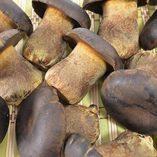 3-libras-1362-gramos-Boletus-aereus-setas-secas-Grado-A-porcini-negro-de-Yunnan-China-0-0