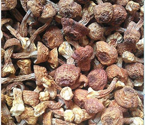 3-libras-1362-gramos-de-calidad-superior-Agaricus-Blazei-secados-en-casa-de-Yunnan-China-0