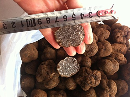 Cubitos-de-trufa-Himalaya-secaron-300-gramos-grado-A-0-0