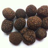Himalaya-famosa-trufa-negra-entera-secada-en-tarro-de-1-libra-454-gramos-0