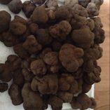 Trufa-fresca-en-conserva-con-aceite-de-oliva-puro-peso-total-800-gramos-0-0